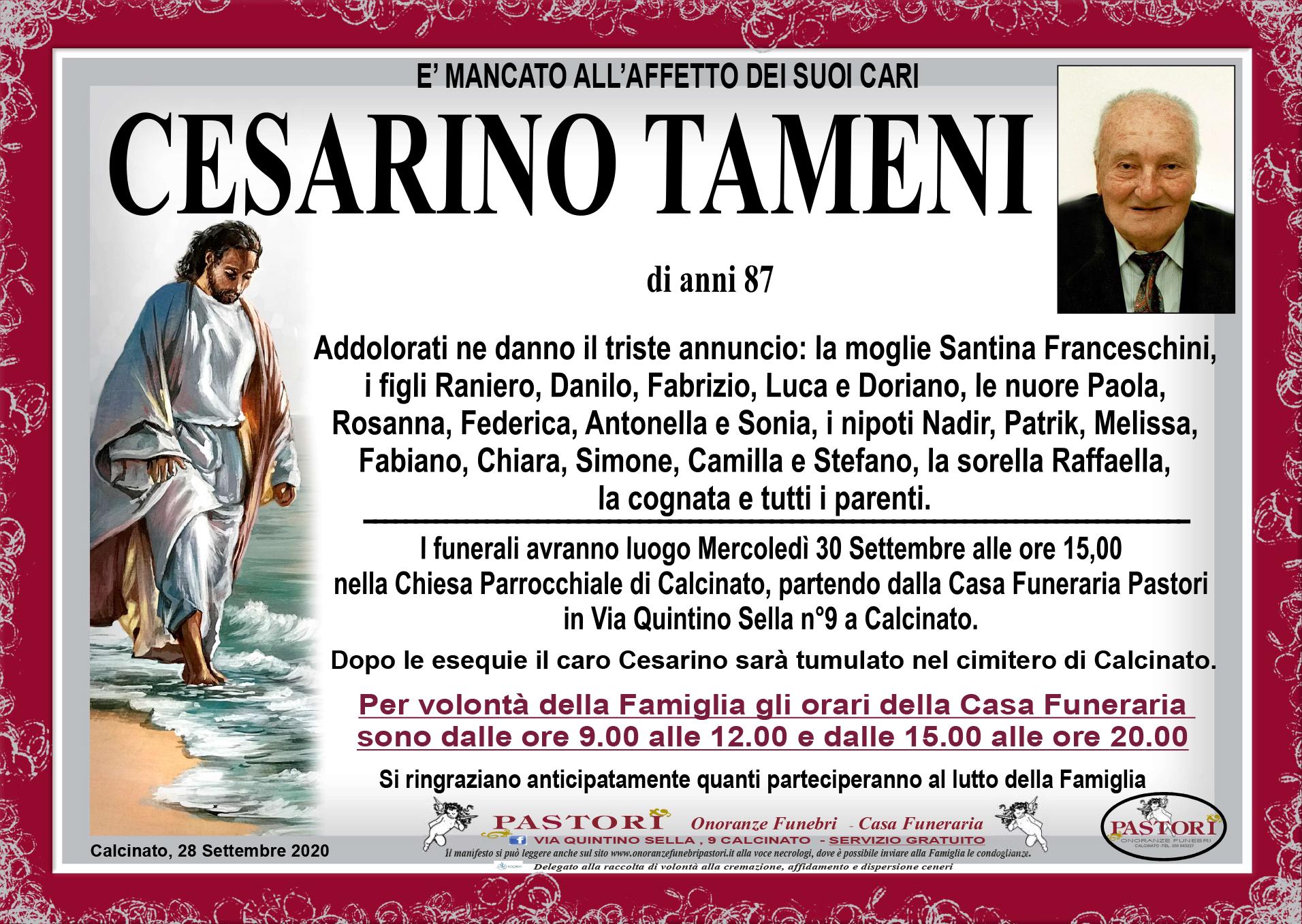 Cesarino Tameni